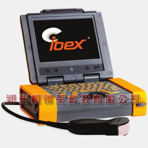 进口兽用B超仪 Ibex Pro