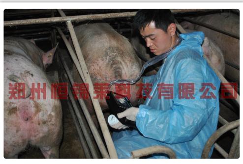 猪用B超机培训