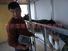 新疆驴场培训驴用B超V30使用方法